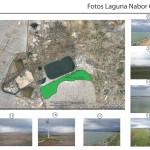 fotos del sitio (lago)